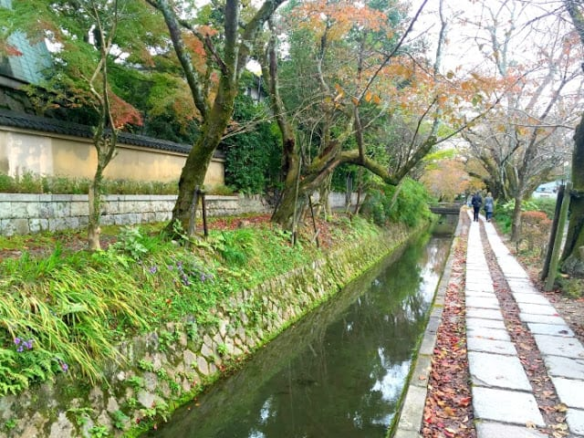 Bike tour of Kyoto