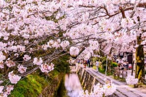 14 AMAZING DAY TRIPS TO TAKE FROM TOKYO